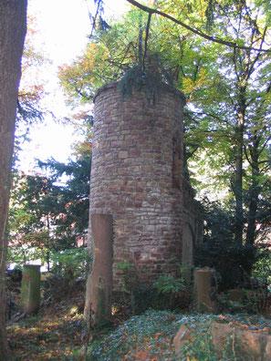 Grab von Fritz Weber beim Waldhaus