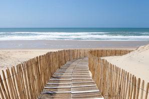 silver coast Portugal