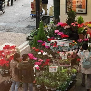 ▲赤い花が多い時期?