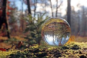 Bild: AdobeStock, Schlierner
