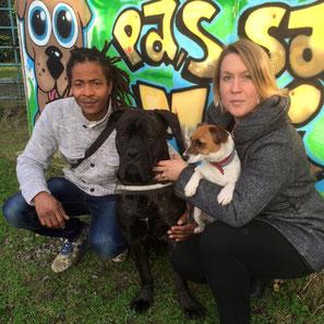 sauvetage chien - adoption chien de refuge - SPA refuge de Bréhand - 22 - Bretagne