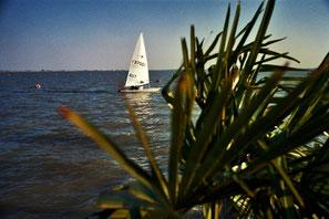 Blick auf das Donau-Delta