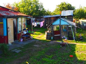 Blick in den Garten eines Hauses in Crantz