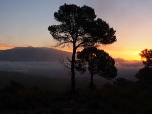 stimmungsvoll der Sonnenuntergang