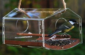 Купить уникальную кормушку ковчег терем. Прозрачная кормушка для птиц.