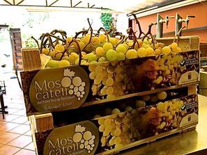 Las primeras cajas del año ya están en El Marino Dénia