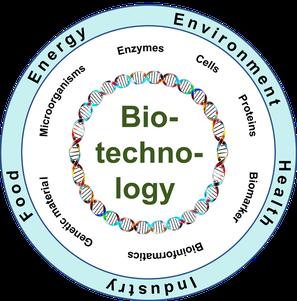 Biotechnologie als Querschnittstechnologie