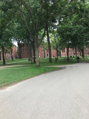 Campus von Harvard