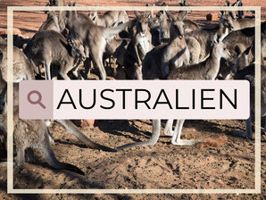 Australien: Western Australia, Northern Territory, Sydney, South Australia, Red Center, Perth, Kimberley, Top End, Darwin, Broome, Cape Leveque