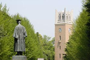 早稲田大学 合格ランキング