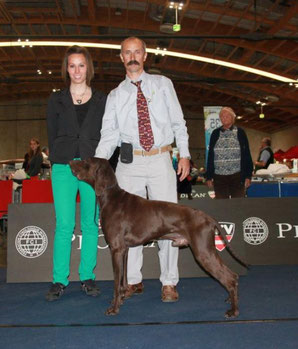 Errol Hunting Trophy - Vice World Winner Salzburg 2012