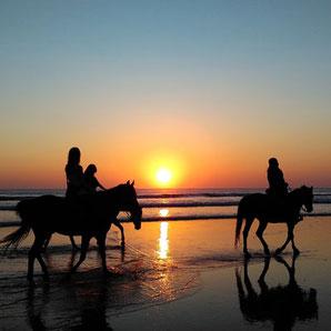 Reiterferien auf Ibiza