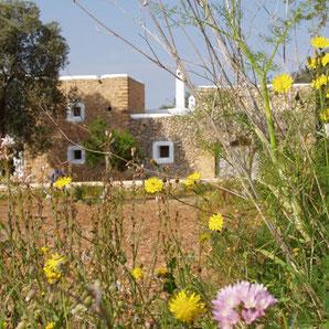 Finca- und Landhotels in Santa Eulalia