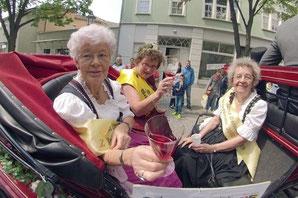 Festumzug Stadtfest Bernburg - Klick!
