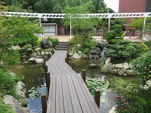 九州産業大学キャンパス庭園(2017/08/24撮影)