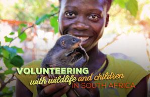 Volunteering with Wildlife and Children in South Africa | JustOneWayTicket.com
