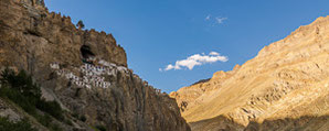 Trekking in Zanskar - Padum, Shade, Lingshed