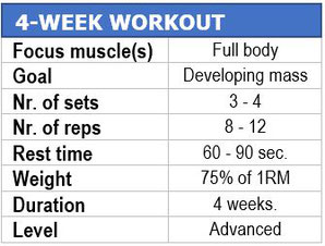 4-week workout plan muscle building