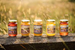 miel de lavande, toutes fleurs, châtaignier, Provence