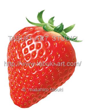 苺、イチゴ、strawberry  フルーツイラスト fruit illustration