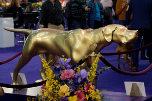 Westminster Kennel Club Show, Foto: Ulf F. Baumann