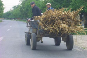 Deutlich mehr Bodenfreiheit als der BMW - Rumänien