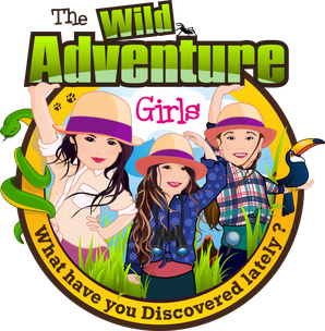 The Wild Adventure Girls logo