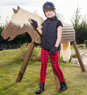 Qualitatives Holz-Pferd für den Garten, welches aus Kastanienholz gefertigt wurde