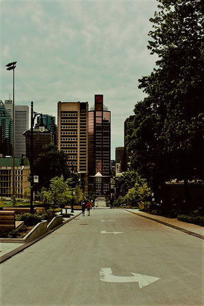 Environmental Consultant Montreal