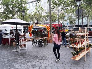 День Святого Георгия в Барселоне