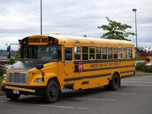 A nice Schoolbus!