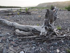 De bedding van de Copper River