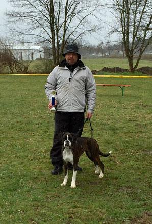 Boxerklub Ausstellung Boxer Hund vonderwaldnielerheide