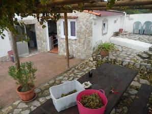 Portwein selber machen in Portugal