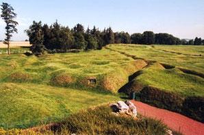 Le parc Terre-Neuvien de Beaumont-Hamel