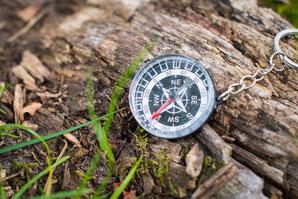 ARNT kompas - zelfbewustzijn - invloed vergroten