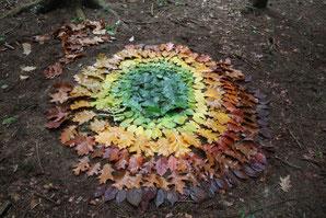 Mandala de feuilles d'automne