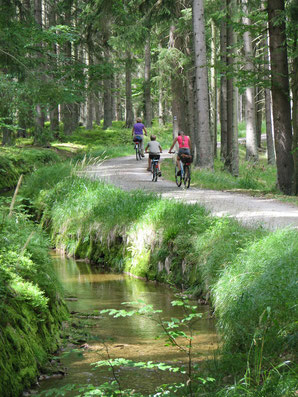 Schwarzenbergischer Schwemmkanal (c) Ferienregion Böhmerwald