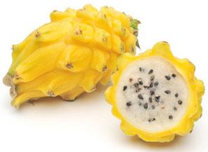 pitaya gialla, il frutto del benessere