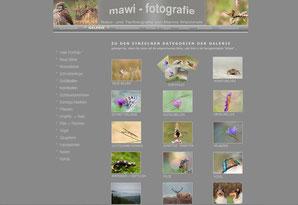 Website 2009-2013 mawi-fotografie
