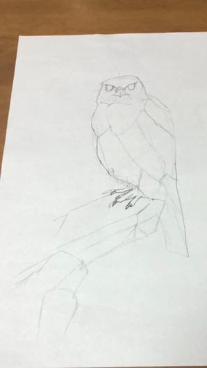 「鳥の描き方マスターブック」という本を読んで描いた絵です。形の捉え方がよくなりました。