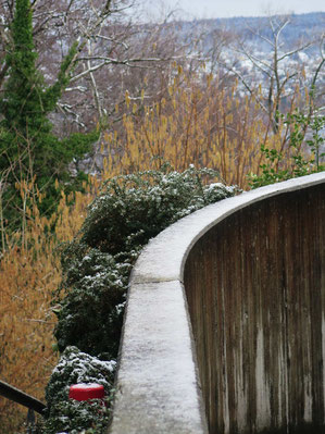 17. Februar 2016 - Der Winter ist nicht vorbei, es bleibt nass und kalt