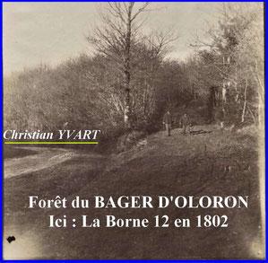 Extrait du livre Buffault par Christian Yvart-ACCOB Oloron - Histoire forêt du Bager d'Oloron