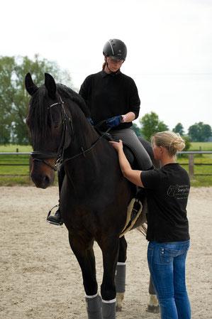 Reiter auf Pferd bei der Sattelanpassung