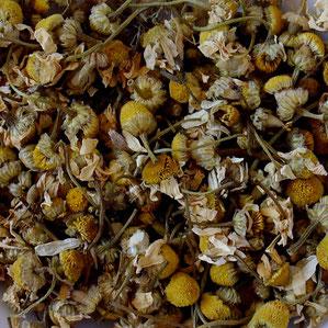 Organic Chamomile, German Chamomile
