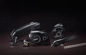 Shimano Steps E8000 Mittelmotor für e-Mountainbikes