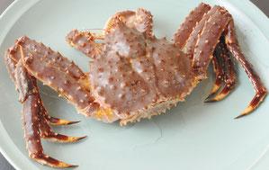 King Crab @1kg 20,000 yen