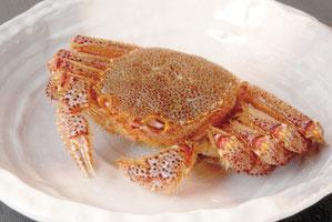 Hairy Crab @1kg 20,000 yen