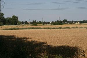 Von Feldern umgeben!