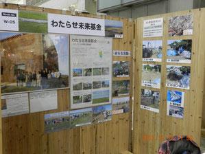 仕切り壁に写真とポスター
